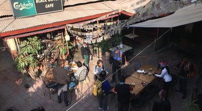 Photo of Asian Restaurant Black Olive at Nepal
