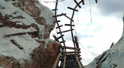 Photo of Theme Park Ride / Attraction Expedition Everest at Asia, Animal Kingdom, Lake Buena Vista, FL 32830, United States