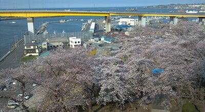 Photo of Park 館鼻公園 at 湊町字館鼻78-16, 八戸市, Japan