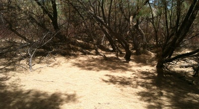 Photo of Disc Golf Marana Rock Disc Golf Course at W Idle Wild Dr, Tucson, AZ, United States