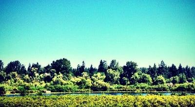 Photo of Lake Larsen Lake at Bellevue, WA 98007, United States