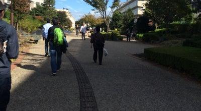 Photo of Trail 高沼遊歩道 at 北袋1丁目-吉敷町4丁目, さいたま市大宮区, Japan