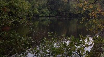 Photo of Lake Silver Lake at Atlanta, GA 30319, United States