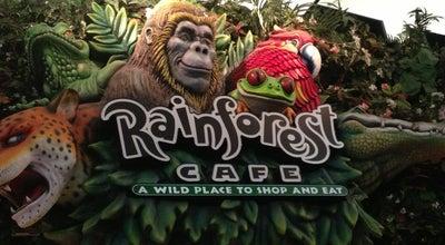Photo of Restaurant Rainforest Cafe at 12801 West Sunrise Blvd, Sunrise, FL 33323, United States