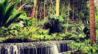 Photo of Botanical Garden Singapore Botanic Gardens at 1 Cluny Rd., Singapore 259569, Singapore