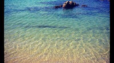 Photo of Beach Scorching Bay at Karaka Bay Rd, Karaka Bay 6003, New Zealand