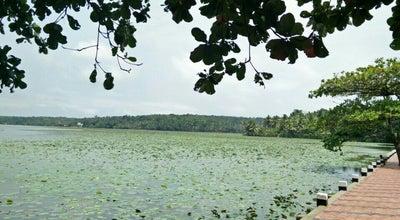 Photo of Lake Vellayani lake at Vawamoola 695523, India