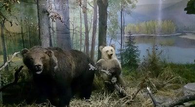 Photo of History Museum Национальный музей Республики Башкортостан at Ул. Советская, 14, Уфа 450077, Russia