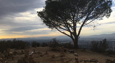Photo of Scenic Lookout The Hope Tree at Los Angeles, Ca 90068, Los Angeles, CA 90068, United States