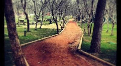Photo of Park Recep Yazıcıoğlu Parkı at İncilipınar Mah., Pamukkale 20100, Turkey