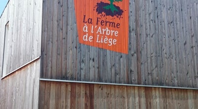 Photo of Farmers Market La Ferme à l'Arbre de Liège at Rue De Liège 39, Lantin 4450, Belgium