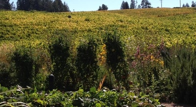 Photo of Winery Lynmar Estate Winery at 3909 Frei Rd, Sebastopol, CA 95472, United States