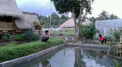 Photo of Indonesian Restaurant Lesehan Green Asri at Jl. Ahmad Yani, Mataram, Indonesia