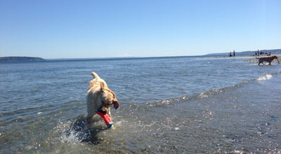 Photo of Other Venue Double Bluff Off-leash Dog Beach: Freeland, WA at 6374 Double Bluff Rd, Freeland, WA 98249