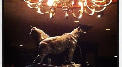 Photo of Nightclub Bull and Bear Steakhouse and Bar at 540 Lexington Ave, New York, NY 10022, United States