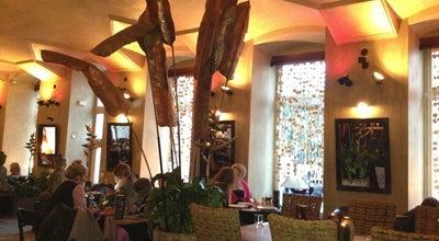 Photo of Thai Restaurant Noi at Újezd 409/19, Praha 11800, Czech Republic
