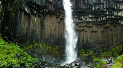 Photo of Outdoors and Recreation Svartifoss at Iceland