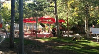 Photo of Park Vakıf Park at Paşaköşkü Mahallesi, Malatya, Turkey