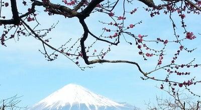Photo of Park 岩本山公園 at 岩本1605, 富士市 416-0901, Japan
