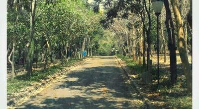 Photo of Park Jardim Botânico at Residencial Nardini, Americana 13468-580, Brazil
