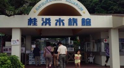 Photo of Aquarium 桂浜水族館 at 浦戸883, 高知市 781-0262, Japan