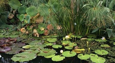 Photo of Botanical Garden Botanischer Garten at Loschgestr. 3, Erlangen 91054, Germany