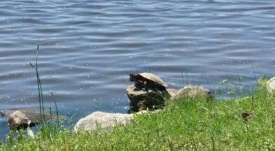 Photo of Lake Appling Lake at Memphis, TN, United States