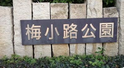 Photo of Park 梅小路公園 (Ume-koji Park) at 下京区観喜寺町1, 京都市 600-8835, Japan