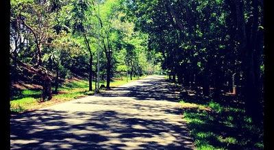 Photo of Park Parque do Sabiá at R. Haia, S/n, Uberlândia 38405-112, Brazil
