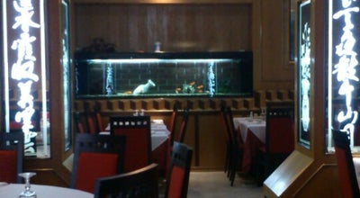 Photo of Chinese Restaurant La Grande Cina at Corso Giacomo Matteotti 43, Cecina 57023, Italy