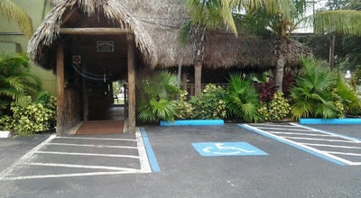 Photo of Dive Bar Green Iguana Bar & Grill at 4029 S West Shore Blvd, Tampa, FL 33611, United States