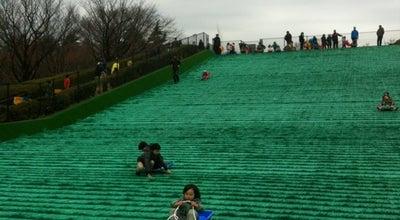 Photo of Playground 小金井公園ソリゲレンデ at Japan