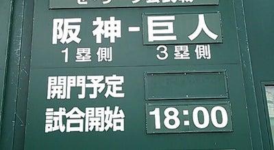 Photo of Baseball Field 阪神甲子園球場 アイビーシート at 甲子園町1-82, 西宮市 663-8152, Japan