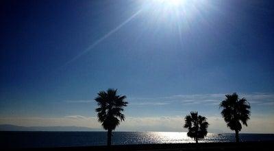Photo of Beach 明石海浜公園 at 明石市, Japan