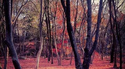 Photo of National Park 경주국립공원(慶州國立公園) at 경주시, South Korea