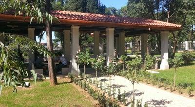 Photo of Park Kraljev park at Kralja Nikole Bb, Podgorica 81000, Montenegro