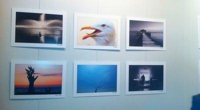 Photo of Art Gallery Resim Heykel Müzesi Kültürpark Sanat Galerisi at Turkey