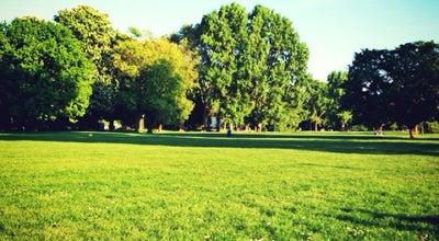 Photo of Park Rheinwiesen at Rheinpromenade, Mannheim, Germany