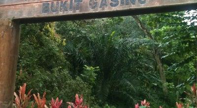 Photo of Trail Bukit Gasing (Gasing Hill) at Jalan Tanjong 5/4, Petaling Jaya 46000, Malaysia