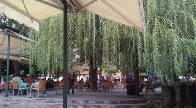 Photo of Tea Room Cemalettin Köklü Çay Bahçesi at Kasımpaşa Mahallesi, Bilecik 11300, Turkey