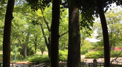 Photo of Spa 森の足湯 at 千里万博公園10, Suita 565-0826, Japan