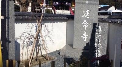 Photo of Temple 延命寺 at 逗子3-1-17, 逗子市 249-0006, Japan