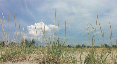 Photo of Beach Пляж на Дальней Косе at Бердянск, Ukraine