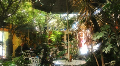 Photo of Vegetarian / Vegan Restaurant Jardin Interior at José Ma. Velasco, México, Mexico