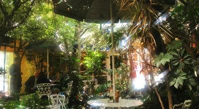 Photo of Vegetarian / Vegan Restaurant Jardin Interior at José Ma. Velasco, México, Mexico