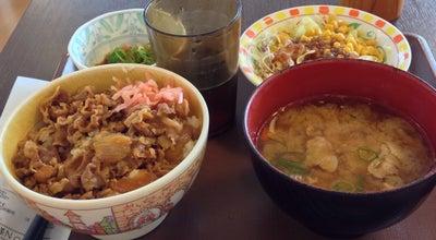 Photo of Diner すき家 ソニー厚木テクノロジーセンター店 at 旭町4-14-1, 厚木市, Japan
