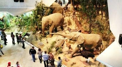 Photo of Science Museum Государственный Дарвиновский музей / State Darwin Museum at Ул. Вавилова, 57, Москва, Russia