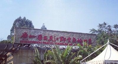 Photo of Field 广州香江野生动物世界 Chimelong Xiangjiang Safari Park at 长隆大道, Guangzhou, Gu, China