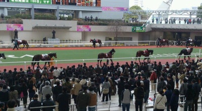 Photo of Racetrack 阪神競馬場 パドック at 駒の町1-1, 宝塚市 665-0053, Japan