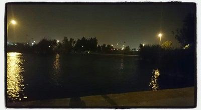 Photo of Lake Discovery Park Pond at 15766-15998 E Pecos Rd, Gilbert, AZ 85295, United States